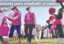 Walk to fight breast cancer Oct. 19
