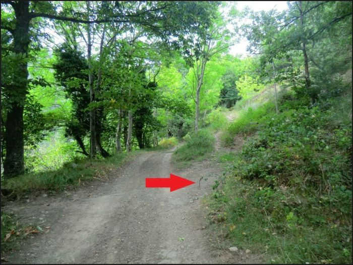A la derecha el camino de Ida. En frente el camino de Vuelta.