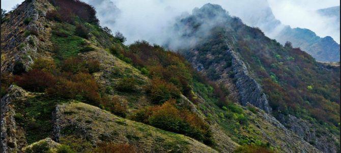Faedos de La Boyariza y Gordón – Alto Bernesga