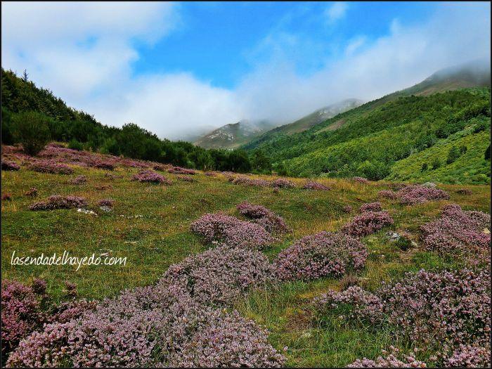 Comienzo del valle de Pinzón