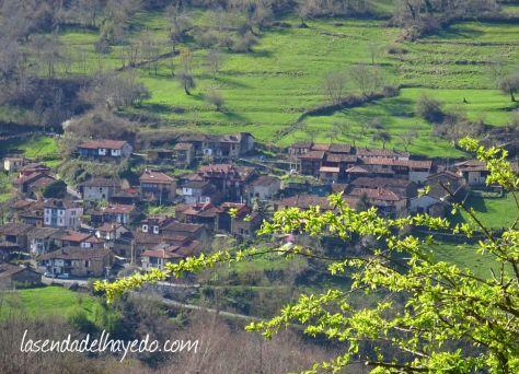 redes asturias