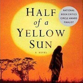 Half-of-a-Yellow-Sun-fx-318x464