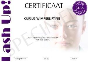 certificaat wimperlifting lashlifting LVL lash up