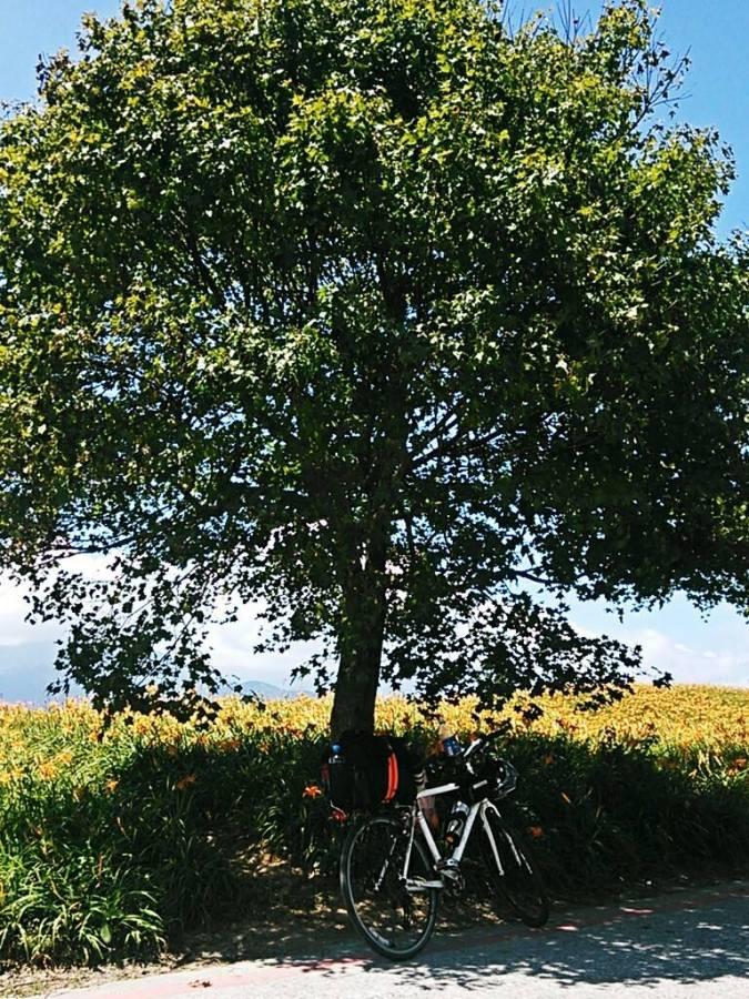 一人單車旅行