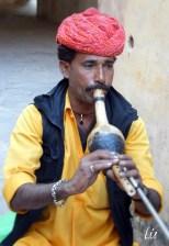 Encantador de cobras, Jaipur Rajasthan