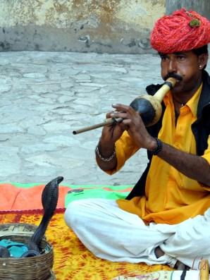 Encantador de Cobra, Jaipur Rajasthan India
