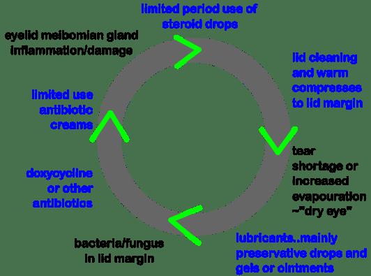 viciouscircleblepharitis