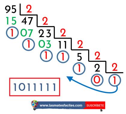 convertir decimal a binario paso a paso