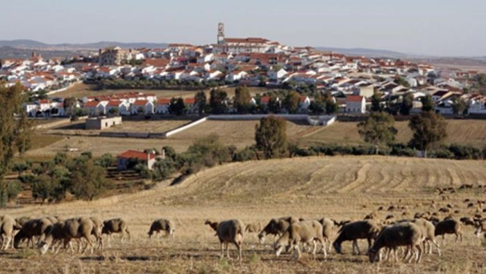 Fuente Obejuna (vista general)