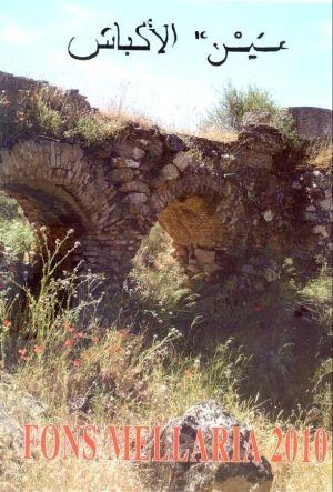 puente árabe de Fuente Obejuna
