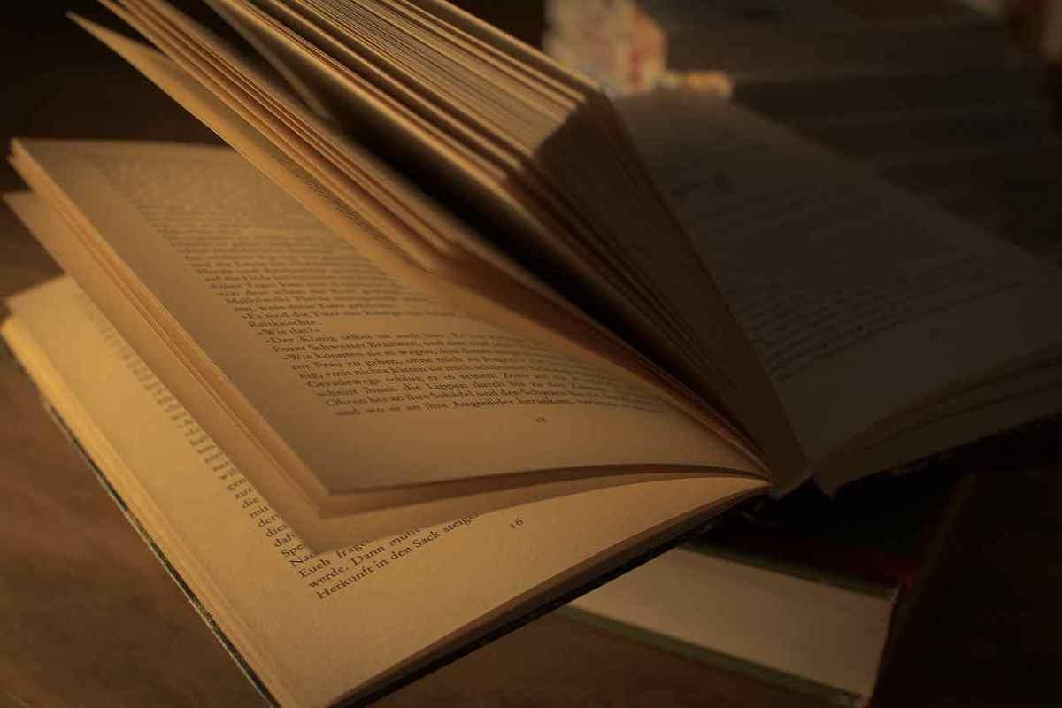Acerca del estilo literario