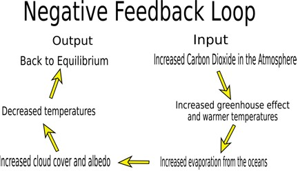 Image result for negative feedback loop