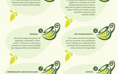 Infografía – 10 Razones para tomar té verde
