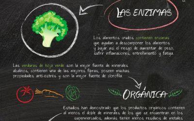 Infografía – De vez en cuando coma alimentos crudo