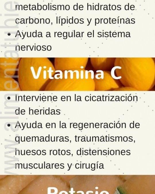 Infografía – Propiedades nutricionales del melón