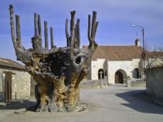 Foto tejoydrago.blogspot.com.es