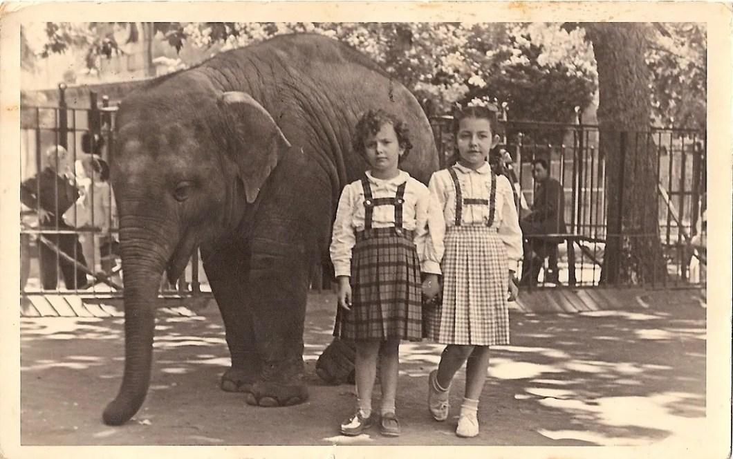 isabella tobino da bambina (a sinistra) allo zoo di roma