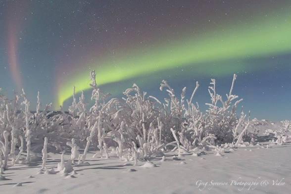 Aurora outside of Fairbanks, AK