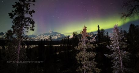A beautiful landscape aurora scene up near Trapper Creek by Ed Boudreau's Photography!