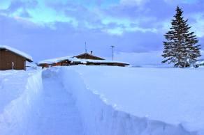 Cutting a path to the lodge!  Caribou Lodge Alaska / Photo by Joe B.