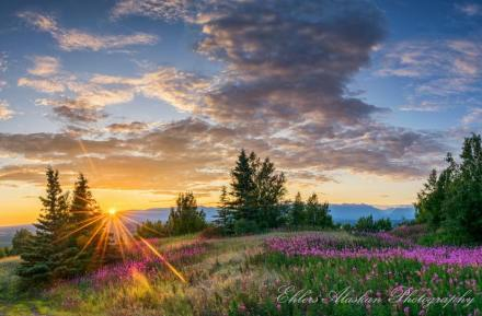 A beautiful sunset shot from the top of the Butte from Ehlers Alaskan Photography! http://www.ehlersalaskanphotography.com/