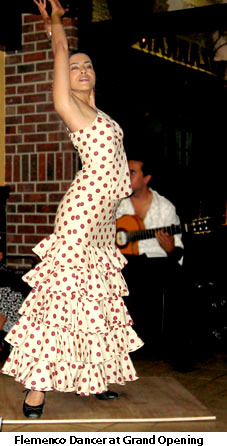 Flemenco Dancer at Lizarran