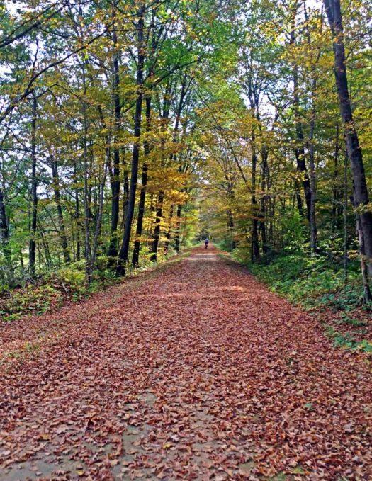 Sparta Elroy bike trail