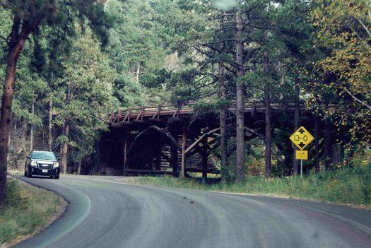 Blackhills Natl Forest, SD Curves