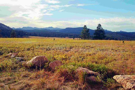 Custer SP, SD Plateau 2