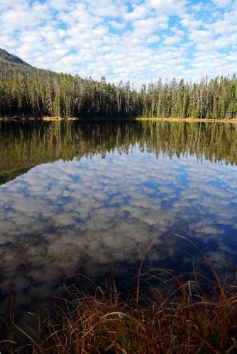 sm_Yellowstone_0350