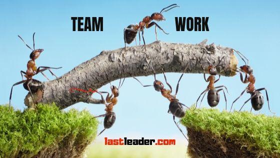 team-building-teamwork