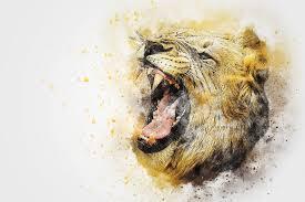 sheep-vs-lion-a-motivational-story