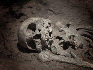 MI-Viking-Skeleton-dig-archaelogy-getty