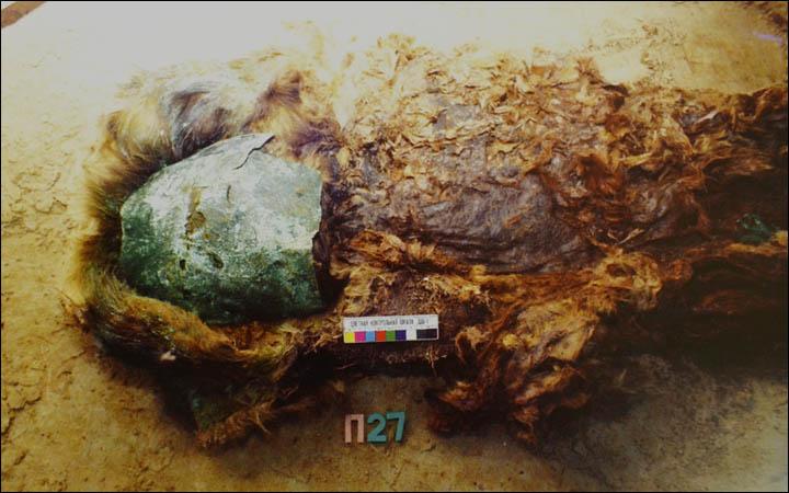 Mummia di bambina con maschera facciale (Foto: The Siberian Times, Natalya Fyodorova