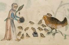 Allevamento di polli dal Salterio di Luttrell (XIV sec.)