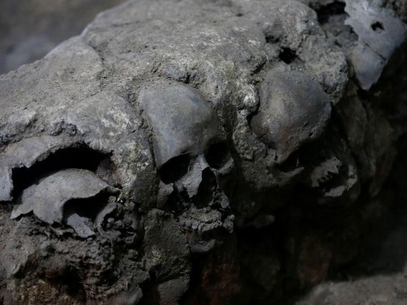 I crani trovati nel sito comprendevano anche donne e bambini, perplessi gli archeologi (Foto: REUTERS / Henry Romero)
