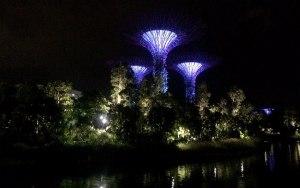 Супердеревья Supertree адрес, Супердеревья Supertree карта, Супердеревья Supertree на карте, Супердеревья Supertree Сингапур, Супердеревья Supertree как доехать