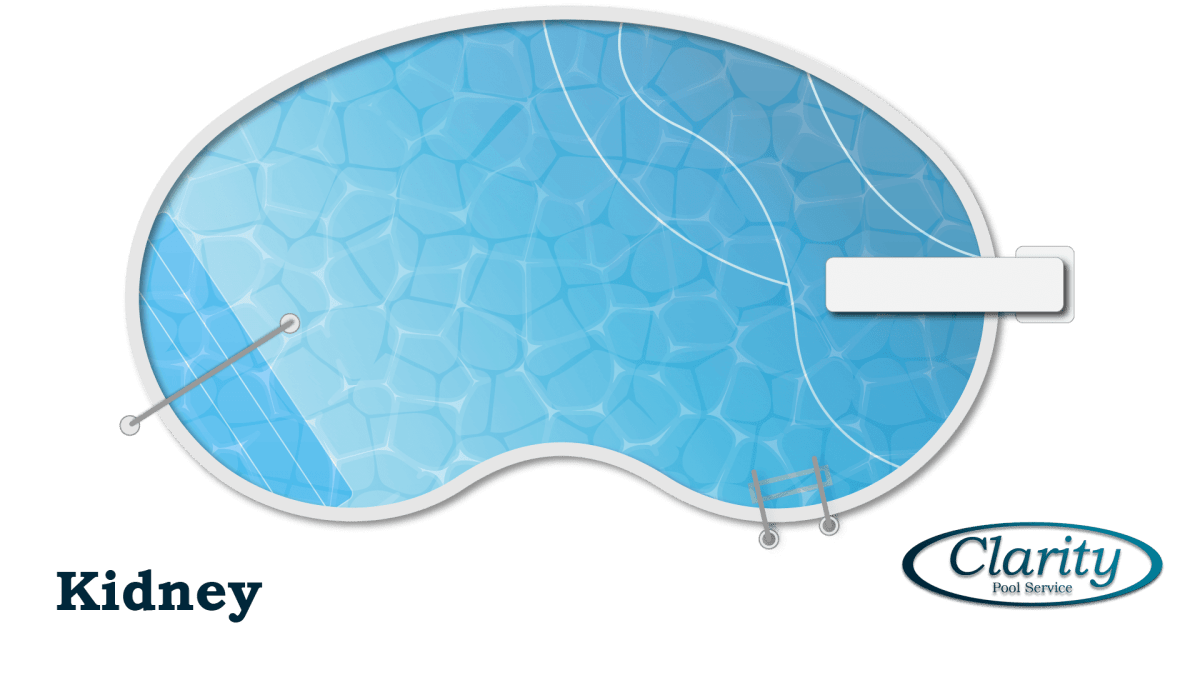Kidney Shape Swimming Pool Shape Configuration - Swimming Pool Sample by Clarity Pool Service of Las Vegas, Nevada