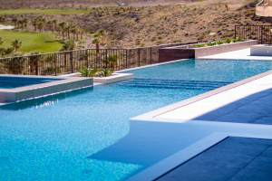Infinity Edge Swimming Pool Combined with a Perimeter-Overflow water Feature Around the Entire Pool