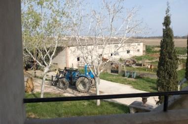 Location de gites équestres en Camargue, accueil de chevaux et de cavaliers, membre du réseau des maisons d'hôtes des Petits CHERRI
