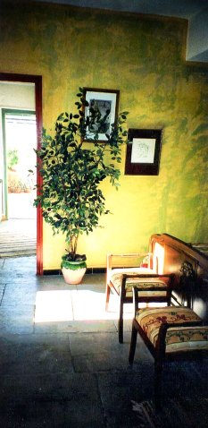 location-en-camargue-belair--terrasse