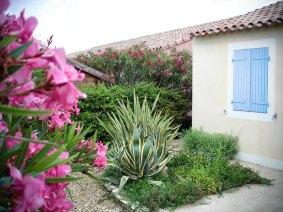 location-en-camargue-labas_03777