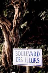 Parc-Floral-boulevard-des-fleurs