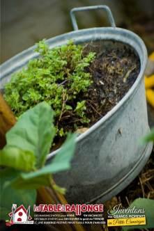 jardin-potager-4