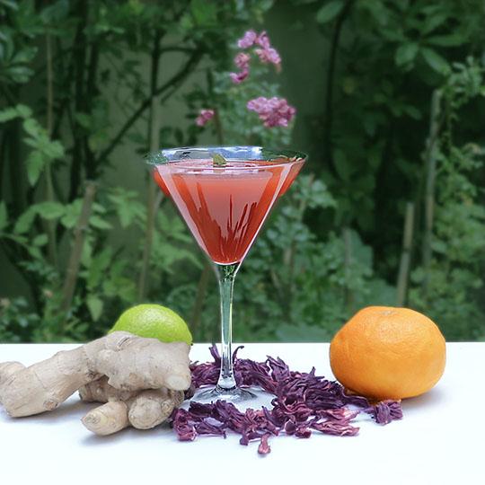 cocktail orange citron gingembre bissap