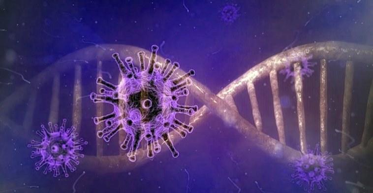 genoma del coronavirus