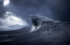 Found At Sea - Ray Collins Photo 19