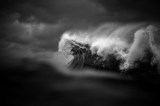 Found At Sea - Ray Collins Photo 3