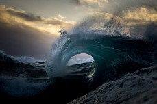 Found At Sea - Ray Collins Photo 9