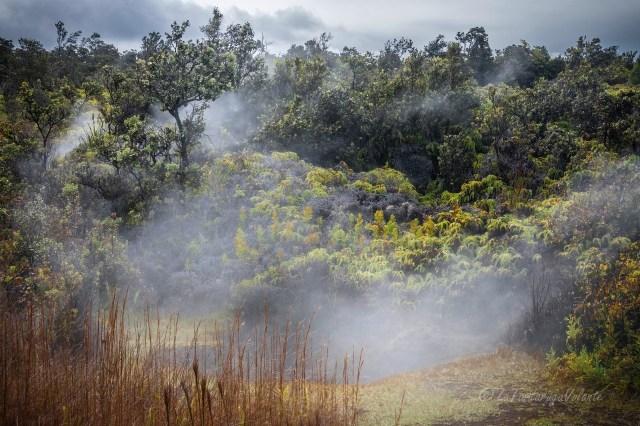 Hawaii paesaggio a Volcano